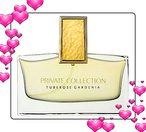 gardenia private collection estee lauder | Estee Lauder used the following elements to create the fragrance ...