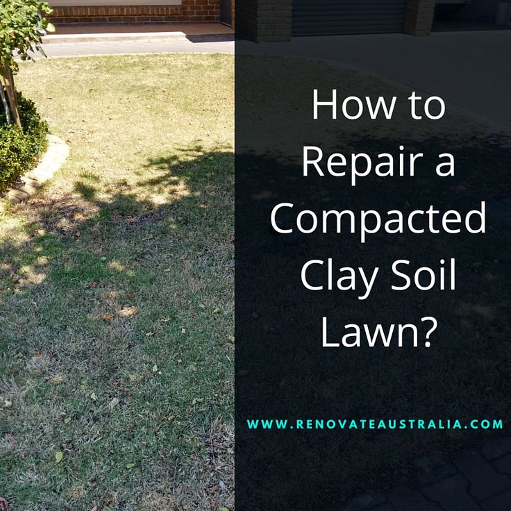 How to Repair a Compacted Clay Soil Lawn