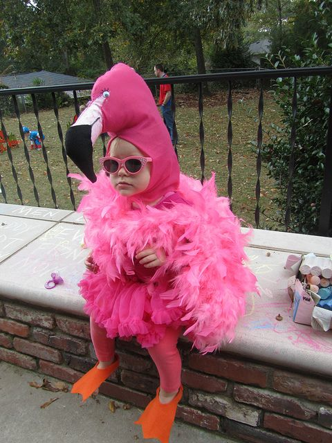Cutest thing i have ever seen! Pink Flamingo toddler costume. Alia would love this!!
