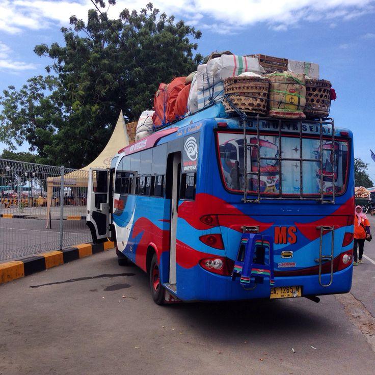 Bus Mulya Sejati Mataram-Calabai ( Dompu )