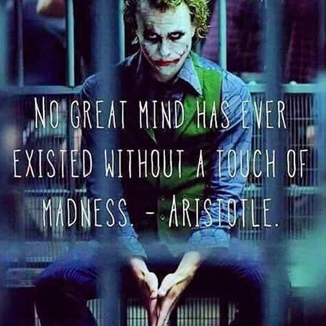 No great mind has ever existed without a touch of madness.   - Aristotle.