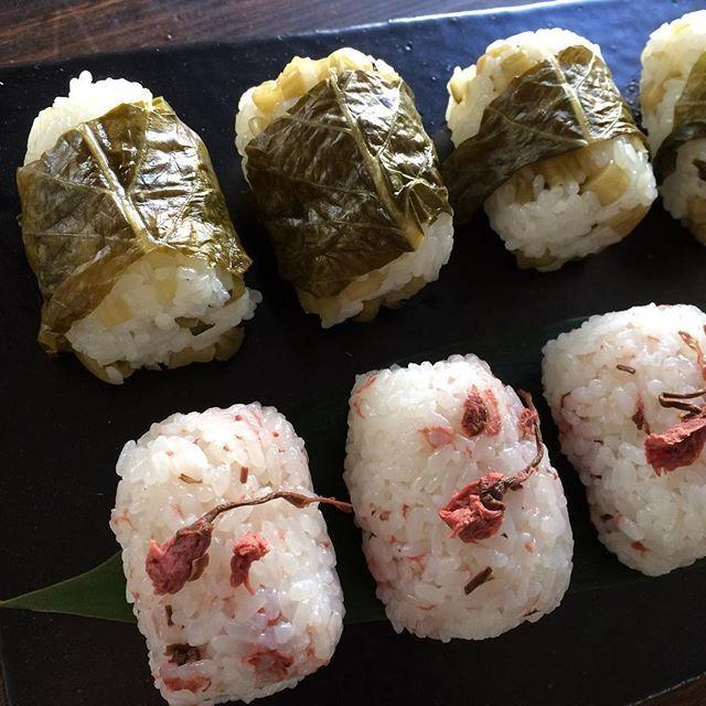 【matricaria_shibuya】さんのInstagramをピンしています。 《Rice balls with pickled Nozawana and cherry blossoms. 遅めの昼ごはんは軽めにおにぎり。 長野県は #小川村 から仕事で東京に来ていた友から、お母様手製の #野沢菜漬け をいただいたので、 #めはり寿司 。茅ヶ崎じぃじが和歌山出身ので、めはり寿司はじぃじの得意料理のひとつなのだ。本当は菜っ葉でごはん全体を包むんだけど、いただいた野沢菜漬けはすでに食べやすい大きさに切ってあった(そういうの、お母さんらしいよね)のでのっけるだけに。 職人気質のじぃじが作るともっと小さく握ってくれるのだけど、めんどくさがりの私が作ると、ひとつあたりが少しずつ大きくなっていく。。まぁよい。 #桜の塩漬け がまだあったことを思い出し、 #さくらのおにぎり も追加。 信州の冬を越した野沢菜漬けと、春を待つさくらのおにぎり。 #riceball #pickledc #cherryblossoms》