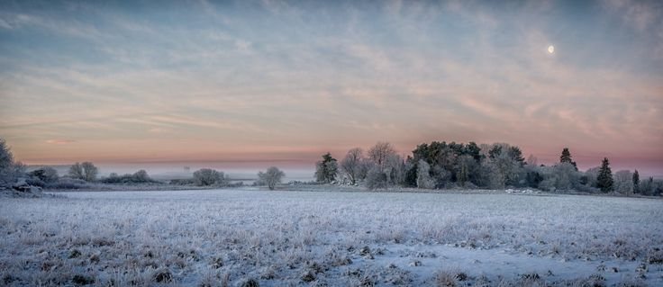 Frosty winter morning panorama landscape with a colorful sky and the moon. Shot in Färingsö, Ekerö, Sweden.