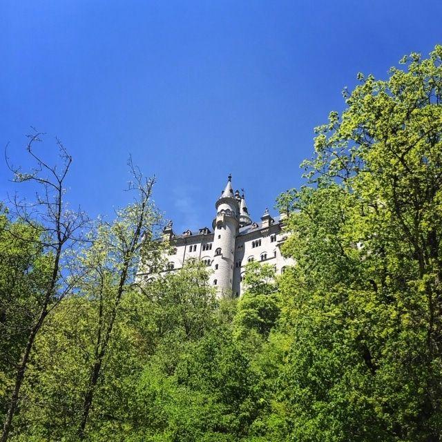 Wanderung Durch Die Pollatschlucht Zum Schloss Neuschwanstein In 2020 Schloss Neuschwanstein Neuschwanstein Wanderung