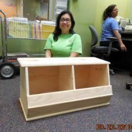 Free DIY Furniture Plans: How to Build a Storagepalooza Storage Bin   The Design Confidential