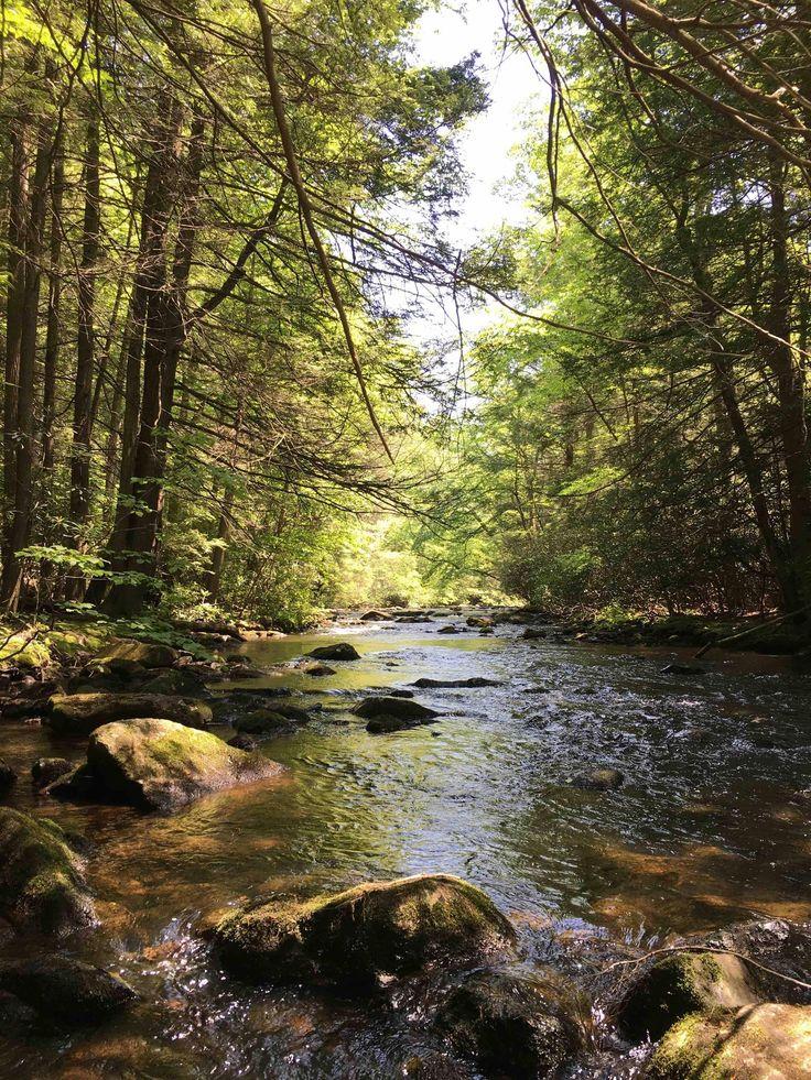 Stoney Creek Pennsylvania [1200x1600] OC landscape Nature ...