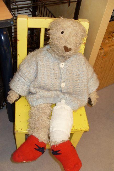 Flip de beer met een gebroken been