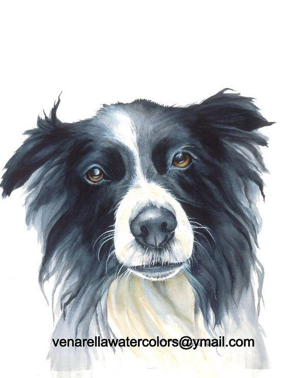 Border Collie chien de travail peinture par VenarellaWatercolors