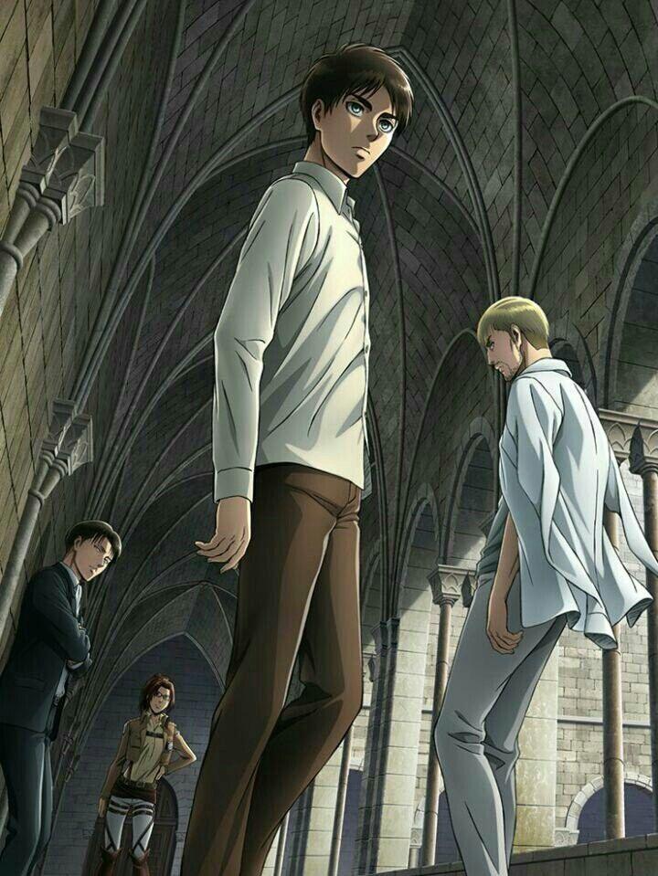 Eren | Erwin| Levi | Hanji | Shingeki no Kyojin Season 2 DVD