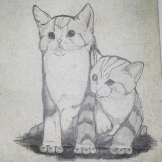 Couple Cat . I drew this when i was 10 y.o . . #latepost #animal #cats #sketch #sketching #draw #drawing #handdrawing #freehand #pencil #monochrome #art #artwork #myfreehandArt #AAI