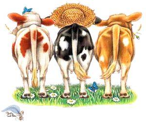 PSP Cartoon Cow 12