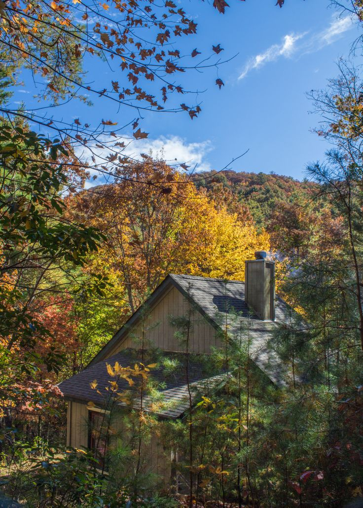 25 best ananda spa cabin wilderness view cabins images on for Rent a cabin in georgia mountains
