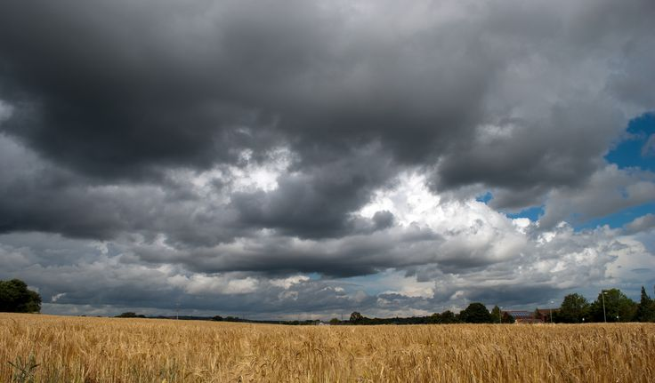 https://flic.kr/p/fqyUHG | Stormy Skies | Time to get indoors....... ps to save you looking Bert isn't in this one!