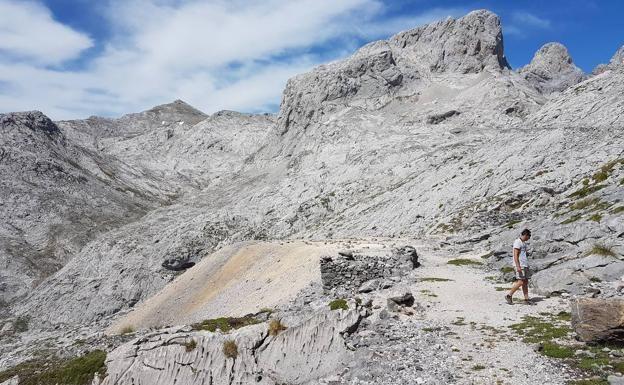 El Parque Nacional de Picos de Europa oferta cinco rutas guiadas gratuitas | El Diario Montañes