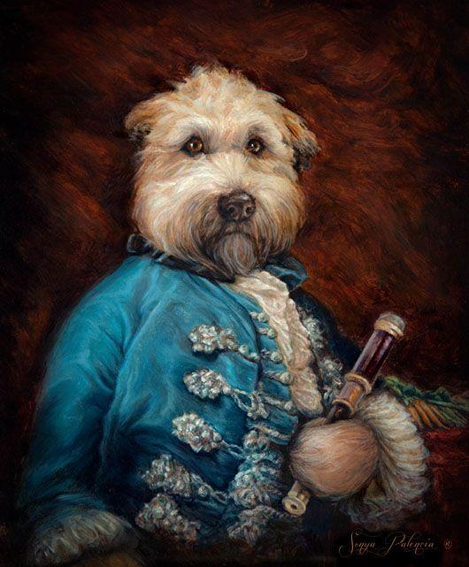 royal pets facebook