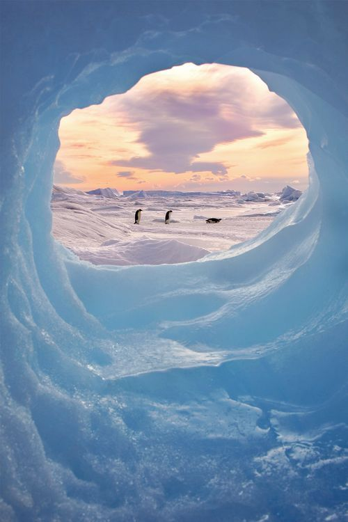 ANTARCTIC PICTURE FRAME Photo by Keith Szafranski -- National Geographic Your Shot