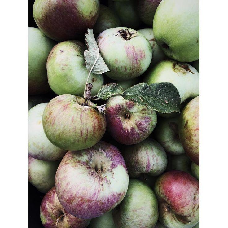 Time to enjoy these beauties... #apples #organic #healthy #autumn #copenhagen