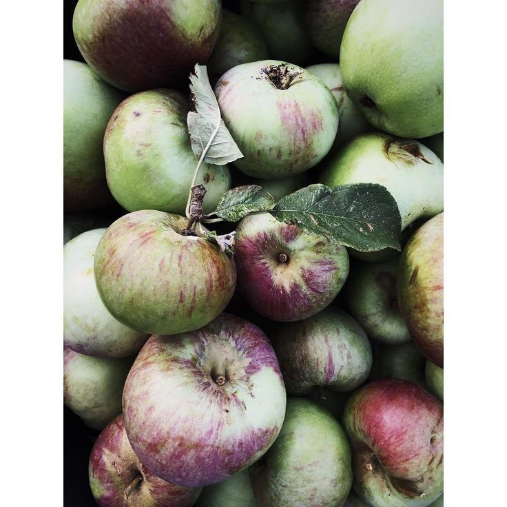 Time to enjoy these beauties... #apples #organic #healthy #autumn #copenhagen