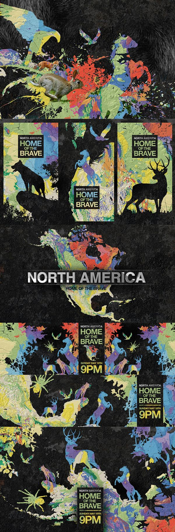 motion graphics/ storyboards/ styleframes | North America - Home of The Brave