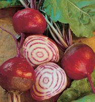 It's planting time again, this time for fall harvest of veggies (herbs and flowers, too) that like the cooler weather. Check out the fall planting calculator from Johnny's Selected Seeds of Maine.