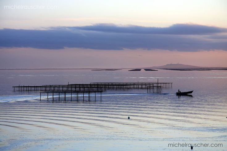 Michel RAUSCHER | Photographies - Mèze-France