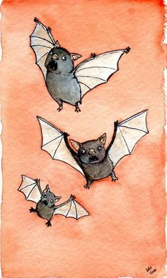 Little bats that are