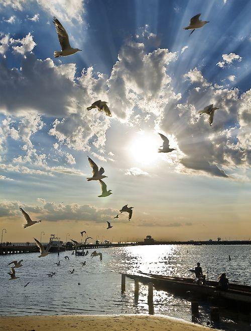 St Kilda - Melbourne - Australia (von sadaiche (Peter Franc))