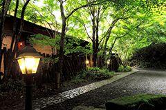 九酔渓温泉 渓谷の宿 二匹の鬼、Ohita, Kyushu