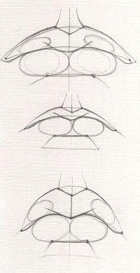 Как нарисовать губы- Как научиться рисовать
