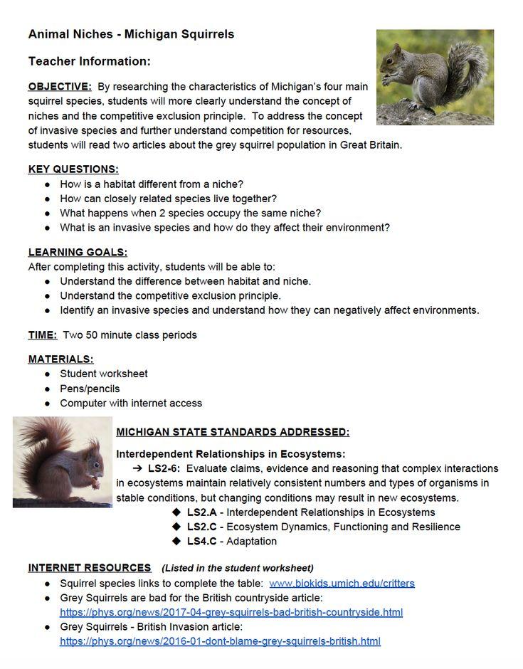 Species Interactions Worksheet - worksheet