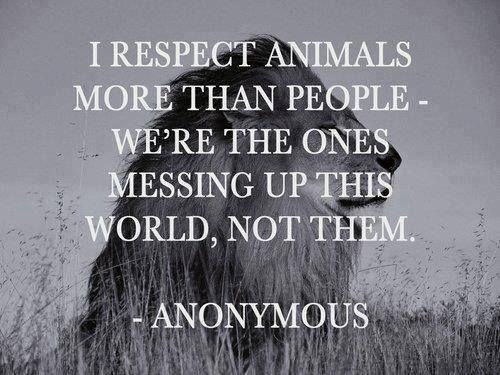 I respect animals more than people...