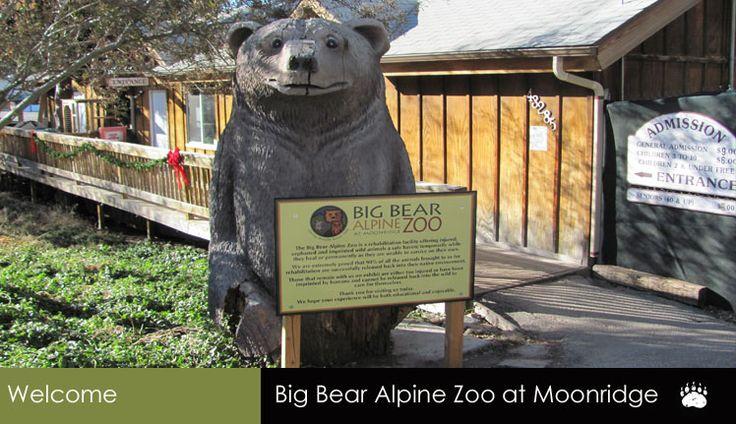Big Bear Zoo, Big Bear California fun place to take the kids #minitimedreamholiday