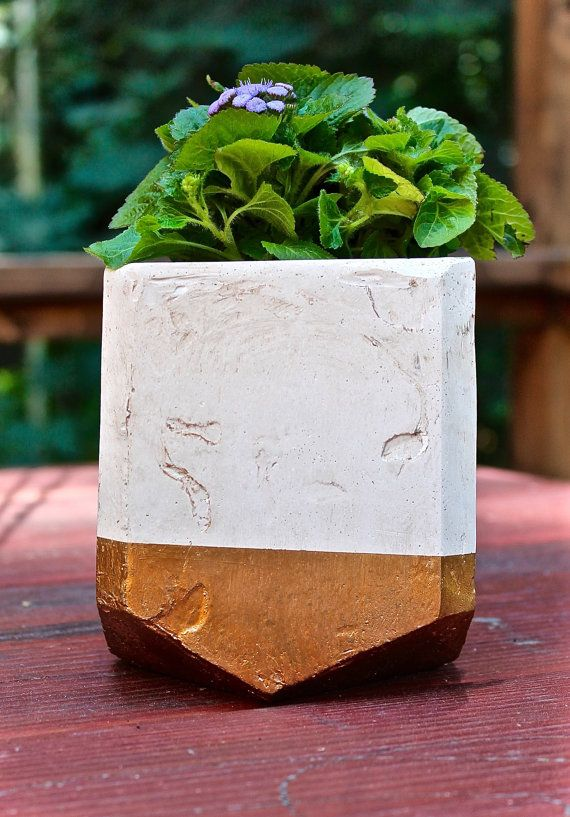 Gold Rimmed Polygon Planter