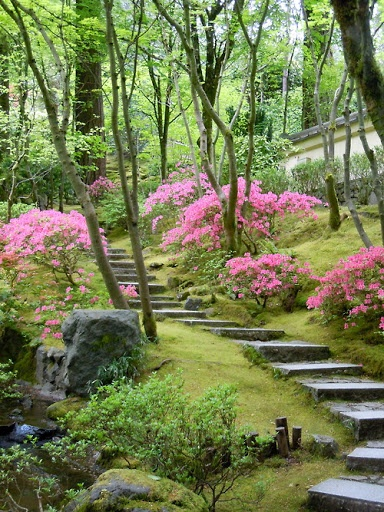 Flower lined steps