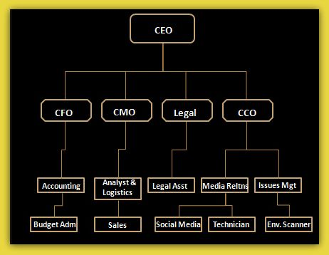 Mer enn 17 bra ideer om Visio Network Diagram på Pinterest - business organizational chart