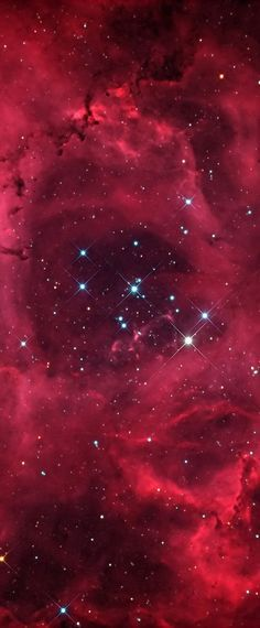 NGC 2244: The Rosette Nebula's center measures about 50 ly across, lies about 4500 ly away, and is visible w/binoculars towards the constellation of the Unicorn