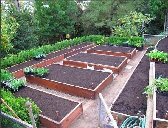 Diseño de la disposición cama del jardín comestibles;  Gardenista:
