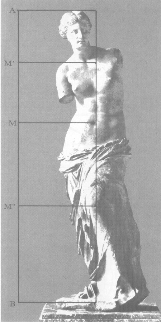 venus milo how to draw proportions - Google Search