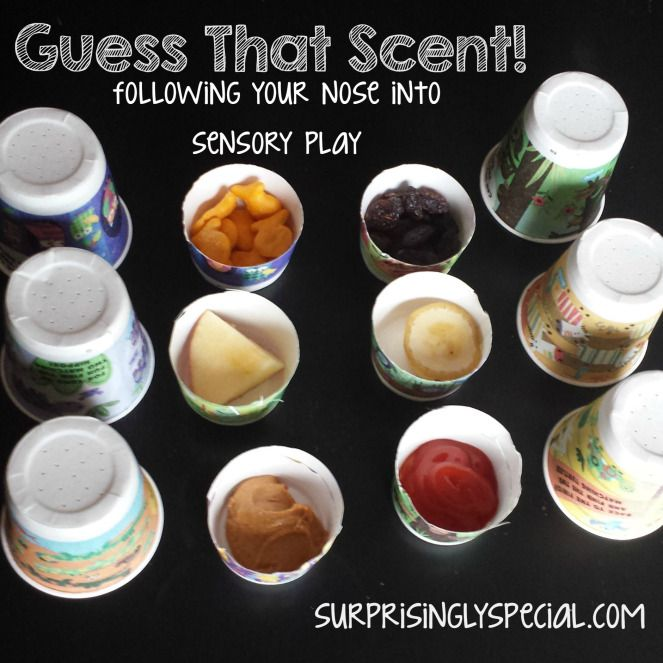 Guess that scent! DIY sensory play all about the sense of smell! Great for a tot school or preschool theme unit on the 5 senses.