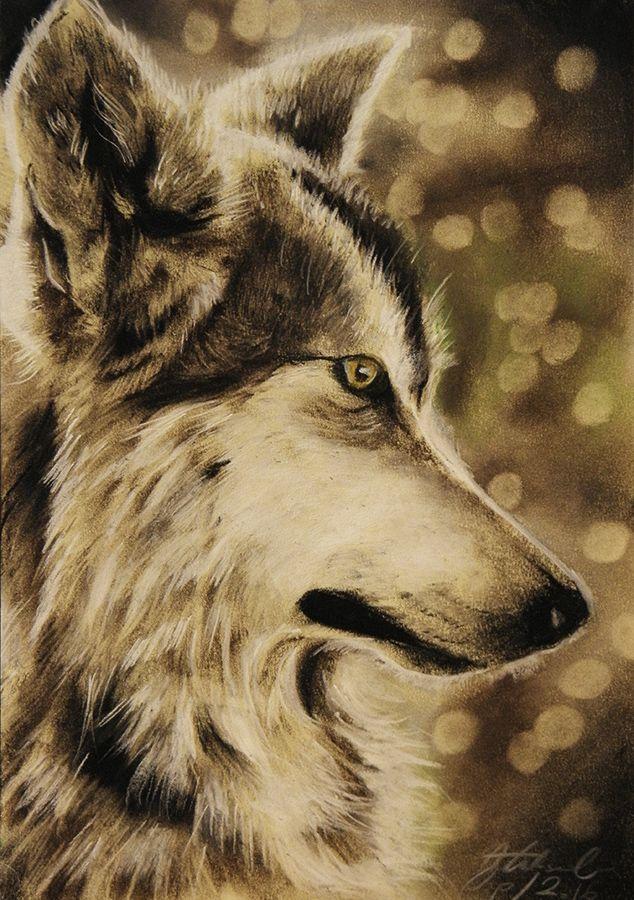fb.com/aleksandrasipart  https://www.etsy.com/shop/AleksandraSip wolf drawing, wolf painting, aleksandra sip artistic works soft pastels art this art is for sale :)