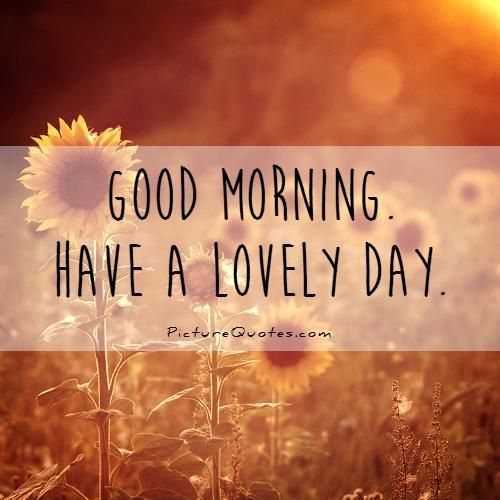 Good Morning Flirty Meme : Good morning have a lovely day picture quotes