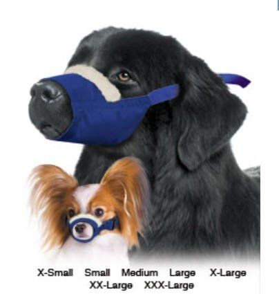 Four Flags Cozy Quick Muzzle 7-Set, Blue * Awesome dog product. Click the image : Dog muzzle