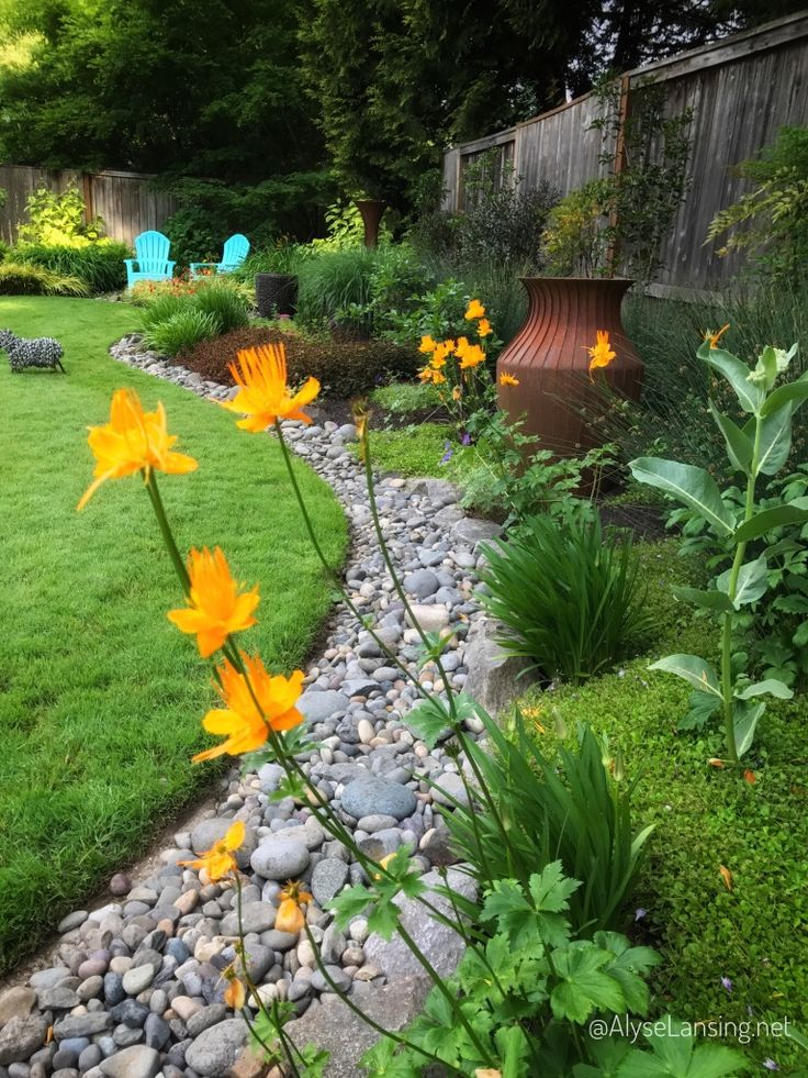 Orange flower of Trollius 'Golden Queen,' stunning with green and the rusted urn by artist Steve Farris.  Stone edge mimics a dry creek bed, and is part of the drainage system for this wet back yard.