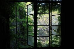 GREEN    【廃墟】廃れゆく風景見せて:哲学ニュースnwk: Green Window