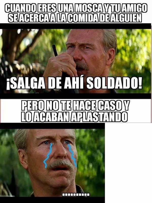 Pin By Cristina Anton On Memes Divertidos Memes Teaching Spanish Teaching