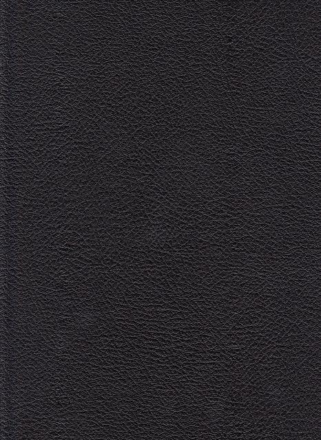 black leather texture by kitkatscrapper, via Flickr
