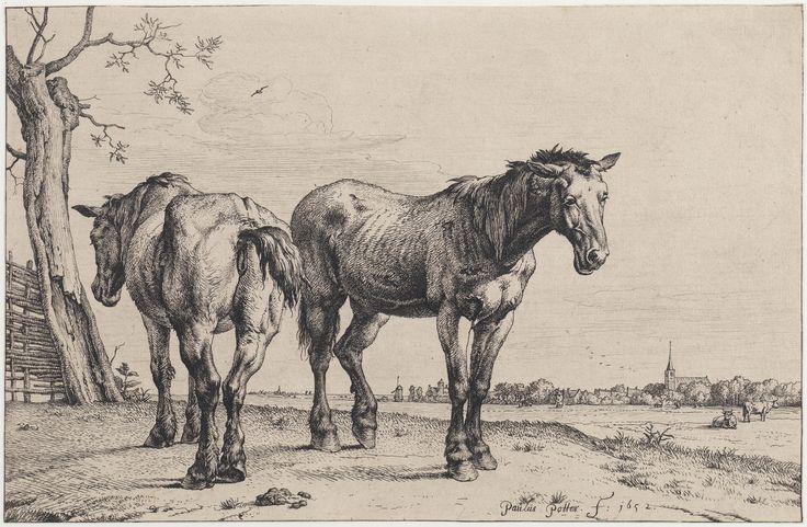 Twee paarden in de wei, Paulus Potter, 1652