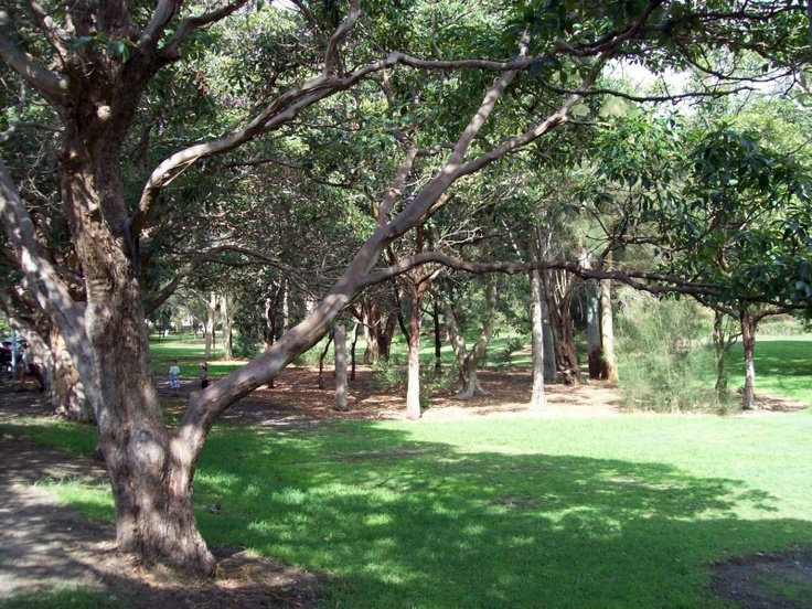 Nielsen Park   Greycliffe Avenue, Vaucluse  Café/kiosk, swimming, toilets, picnic areas, seating, shade.