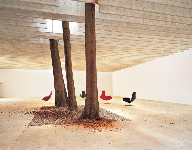 Fjord chairs - Patricia Urquiola