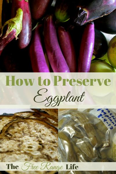 Do you have a bumper crop of Eggplant? Learn how to preserve eggplant to enjoy it all year long!